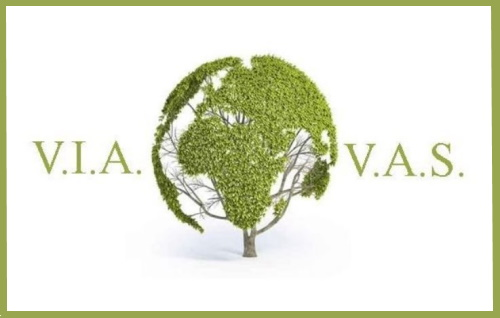 Tabella delle modifiche apportate dal D.L. 31 maggio 2021, n. 77 al Testo Unico Ambientale in tema di VIA e VAS