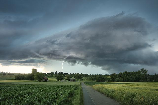 Chiarimenti sulla Circolare Mipaaf del 6 agosto 2021 sugli aiuti alle imprese agricole danneggiate dagli eventi atmosferici avversi